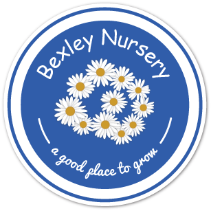 Bexley Nursery | Professional Nursery Day Care from 3 months - 5 years